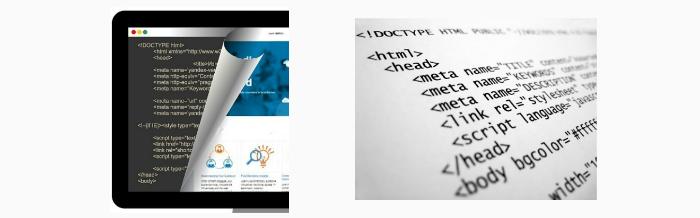 скрипт от копирования теста и фото